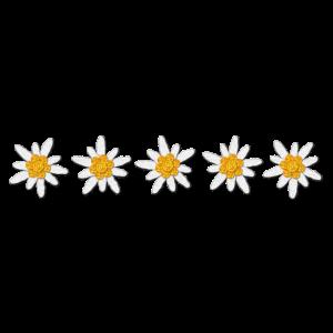 Fünf Edelweiss