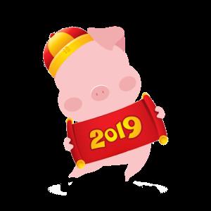 2019 Chinese Pig