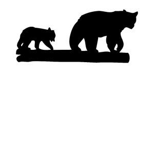 Bären Bär Grizzly Wildnis Natur Raubtier