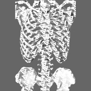 SKELETON RIB CAGE V9 WHITE