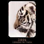 Jade bébé profil