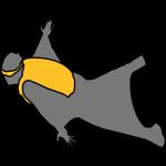 wingsuit_2
