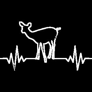 Reh EKG