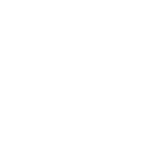 Tännchen Tanne Baum Weihnachtsbaum Pfeil Indianer