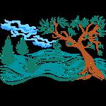 albero in collina