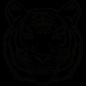 Tiger König des Dschungels