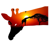 giraffe wildnis