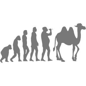 evolution_chameau2