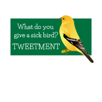 Sick Bird Tweetment Funny Bird Pun