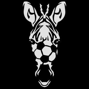 Zebra Zebra Fußball Fußball Fußball-Ball