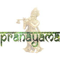pranayama schriftzug und krishna e 35