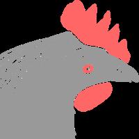 Graues Huhn / grey hen (DDP)