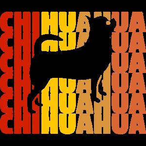Chihuahua Chihuahua Chihuahua Chihuahua