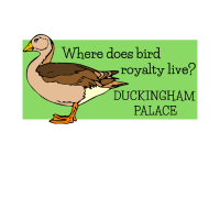 Duckingham Palace Funny Duck Pun