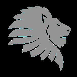 Löwe Raubkatze Wildkatze König