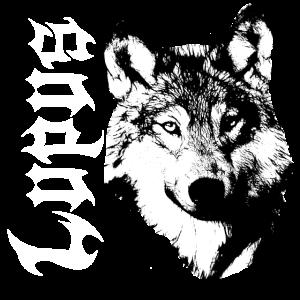 Lupus,Wolf,Wölfe,Hundekopf,Naturschutz,Naturfreund