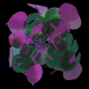 Blaetter violett