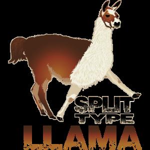 Llama-Lama, Animal, funny