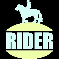 Pferd Reiten Pferdesport