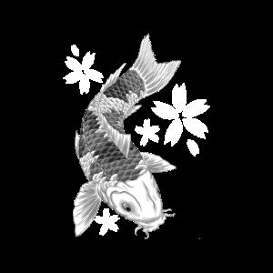 Koi-Fische Kirschblüte Schwarzweiss