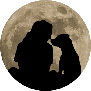 Hund Hundeliebhaber Mond Silhouette Tierfreund