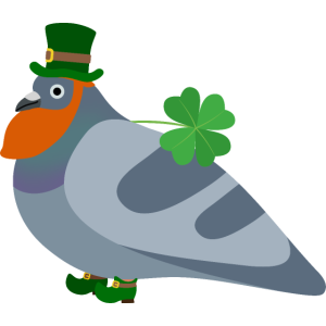 St Patricks Day Pigeon Friend