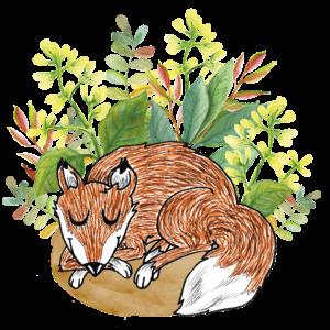 Gute Nacht Fuchs