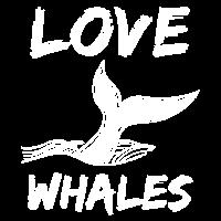 Wal Blauwal Pottwal Buckelwal Ozean Geschenk