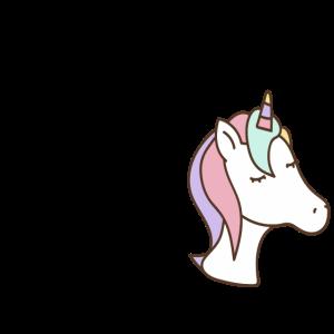 einhorn unicorn spruch Geschenkidee