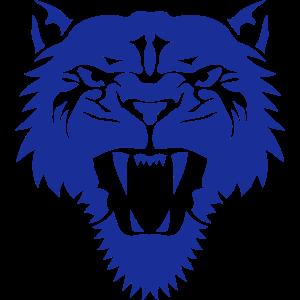 1106 Stammes Löwe Wildtier Löwin