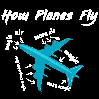 How Planes Fly Geschenk