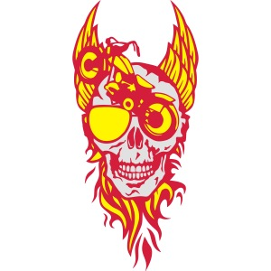 tete mort moto skull aile flamme fire