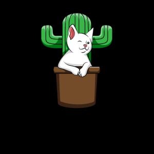 Catcus Cactus Katze Süße Katzenliebe Geschenk