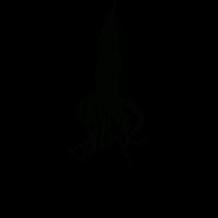 oktopussy