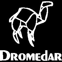 Dromedar Origami