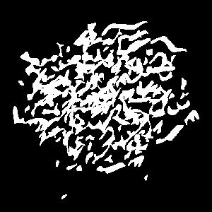 cracked design