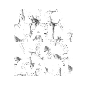 NO PAIN NO GAIN Bodybuilder