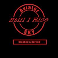 Crashed Burned Still I Rise
