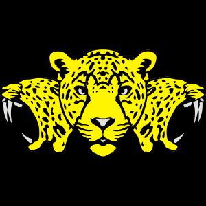 Gepard Wildtier Gesicht Gesicht Profil