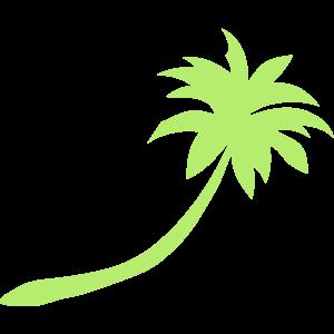 Palme 20222