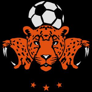 Fußball-Fußball Profil Gepard-Logo