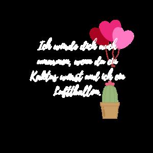 Valentinstag/ Liebe/ Beziehung Kaktus Geschenk