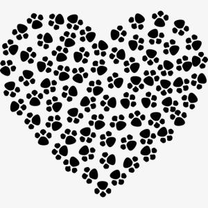 coeur empreinte de chien