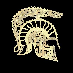 goldener Sparta Helm, mit Wikinger -Symbolen