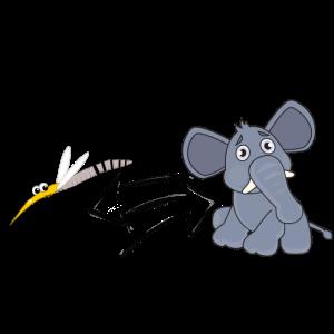 Mücken- Elefanten Gleichung