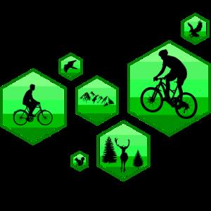 Mountain Biking Fahrrad Natur Fahrradtour