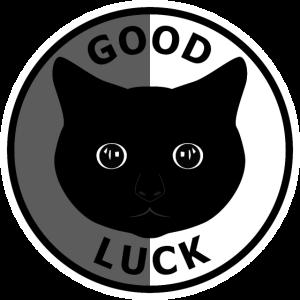 Good Luck - Black Cat Gift
