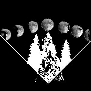 Wolf im Mondlicht der Mondphasen im Wald