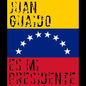 Juan Guaido Es Mi Presidente Venezuela