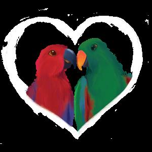Papageien Herz